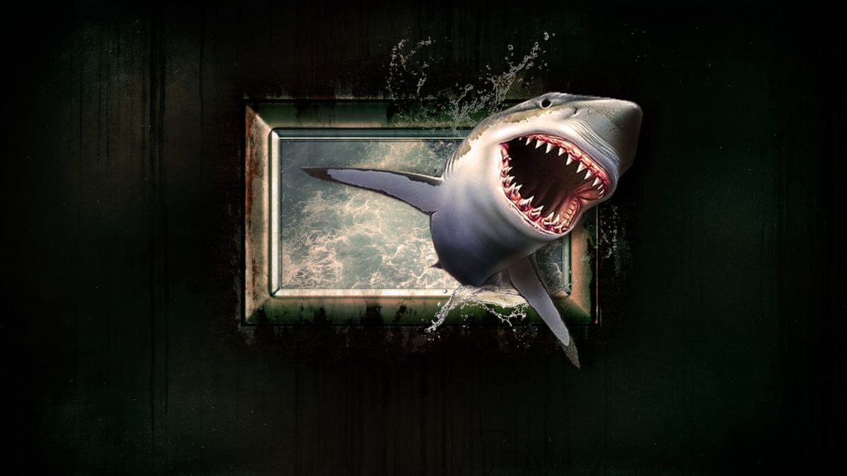 shark-1626288_1280-1200x675.jpg