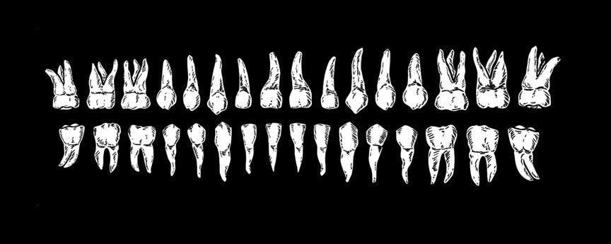 dientes-min.jpg